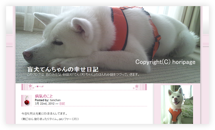2012032501.png